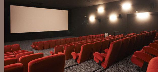 Cinéma Le Connétable • Clisson @ Rudy Burbant