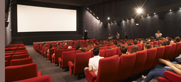 Cinéma Le Cep • Vallet @ Rudy Burbant