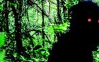 Oncle Boonmee (celui qui se souvient de ses vies antérieures) (Lung Boonmee Raluek Chat)